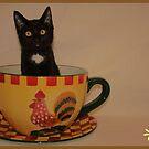 Kit-Tea! by minnielee