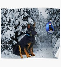 GERMAN SHEPHERD OUT IN SNOW PICTURE Poster