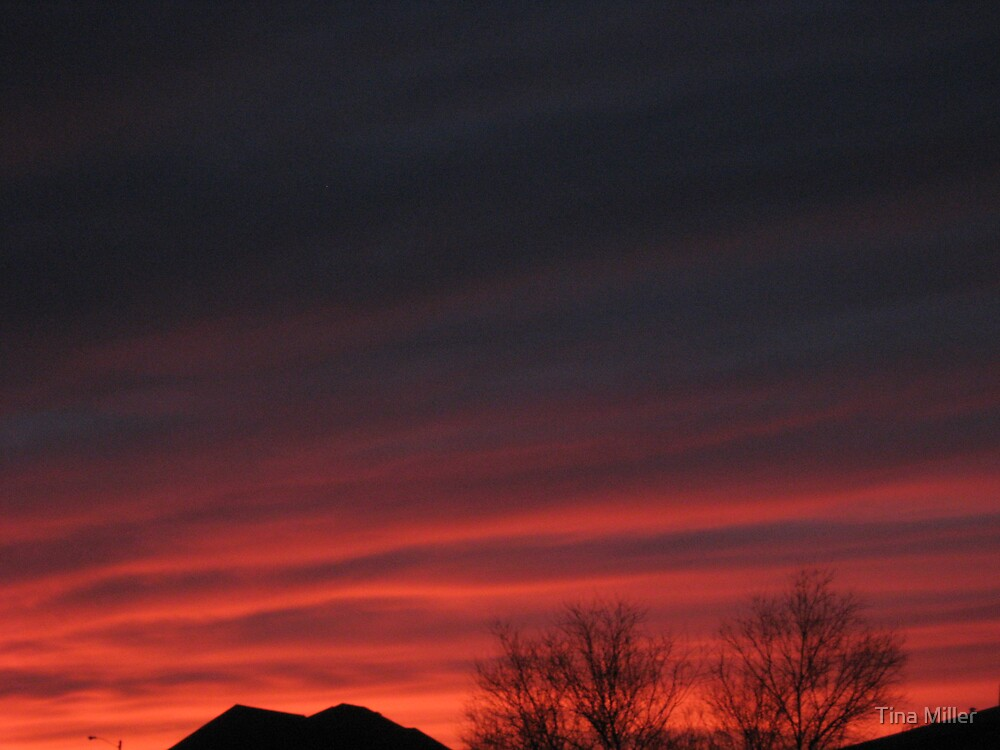 Red Dawn by Tina Miller