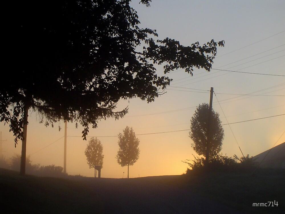 misty sun by mrmc714