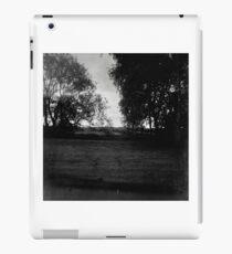 Rural Field Scene iPad Case/Skin