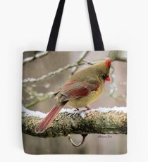 You'd Think Her Feet Would Freeze! Tote Bag