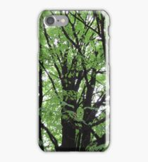 Beautiful smoked stained tree iPhone Case/Skin