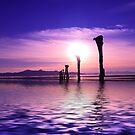 Island Sunset by Gene Praag