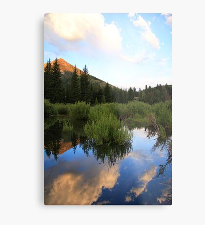 Reflection Of the Morning Metal Print