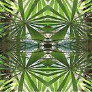 Palm Fronds by Rosie Brown