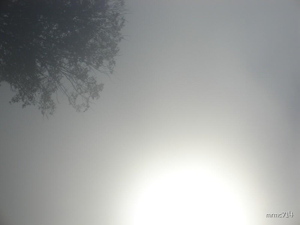misty 2 by mrmc714