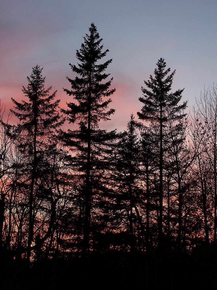 Winter Sunset 2 by Gene Cyr