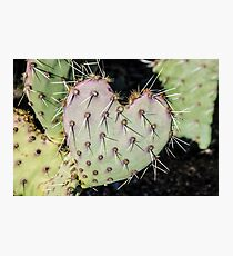 Love Hurts Photographic Print