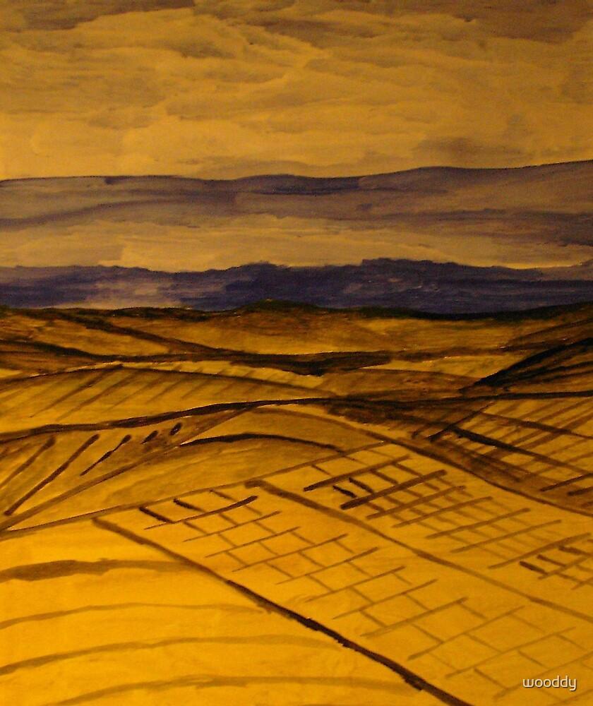 wheat fields by wooddy