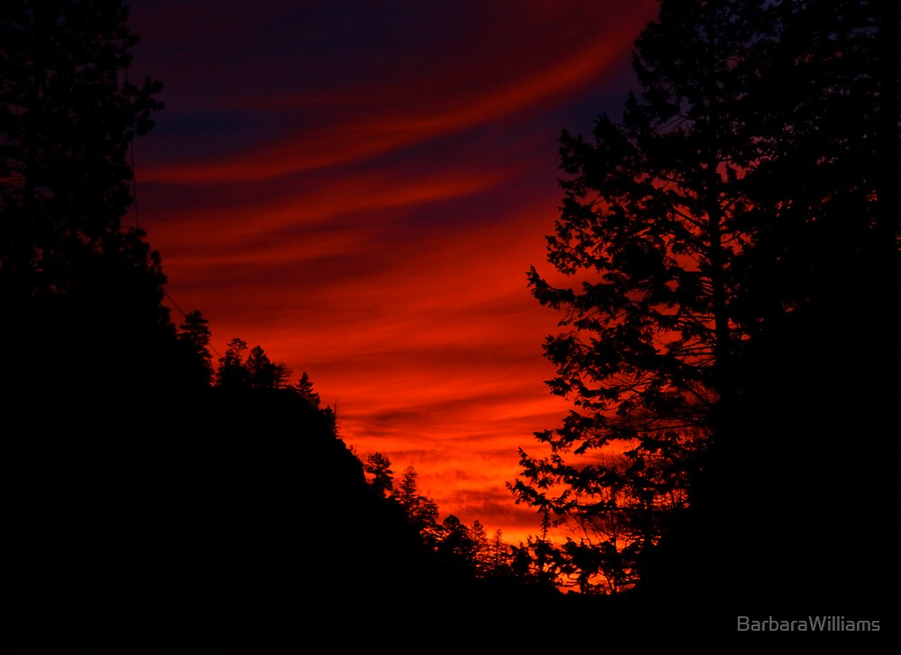 Sunrise In The Rockies by BarbaraWilliams