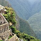 Architecture in Machu Picchu by Alessandro Pinto
