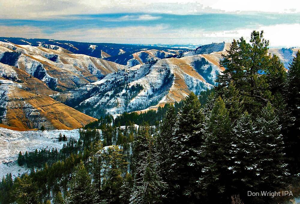 Joseph Canyon by Don Wright IPA