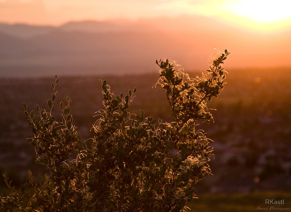 Sunset from Lone Tree by RKastl
