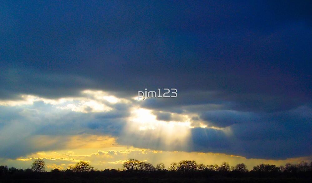 rays by pjm123