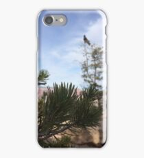 Raven in a Canyon Photography iPhone Case/Skin