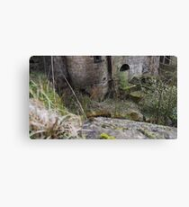Nature shall reclaim the earth Canvas Print