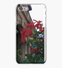 Ruby Red Flower Photography iPhone Case/Skin