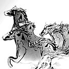 Silver cloud Horses by Grant Wilson