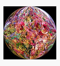 Bright coloured ball Photographic Print