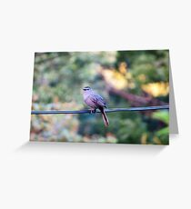 Finch on power line Greeting Card
