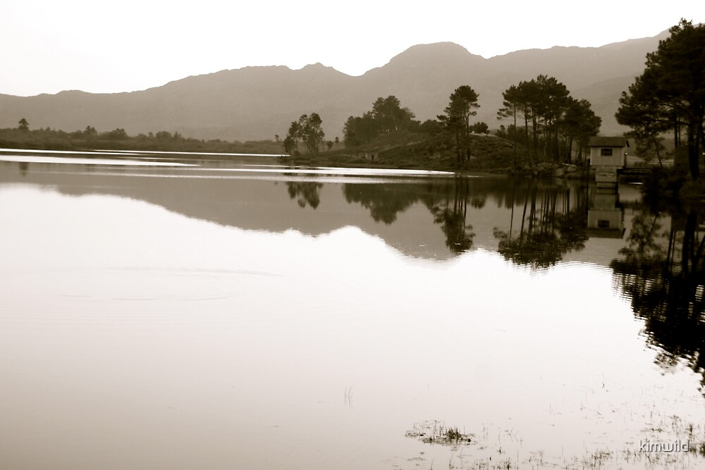 Reflective by kimwild