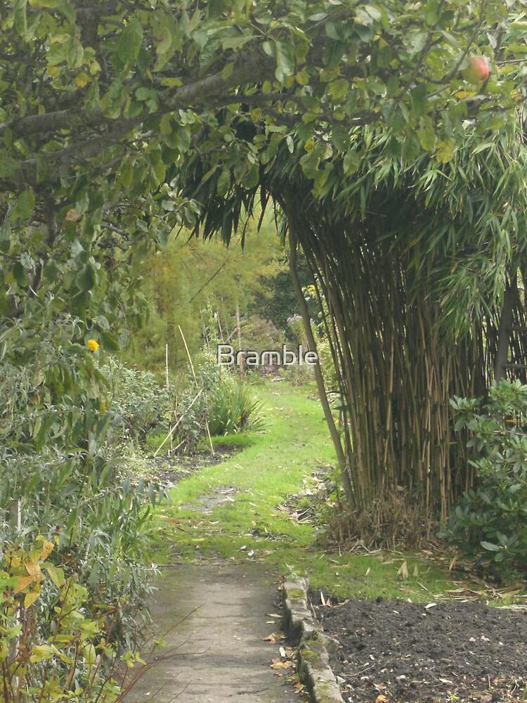 The Far Garden by Bramble