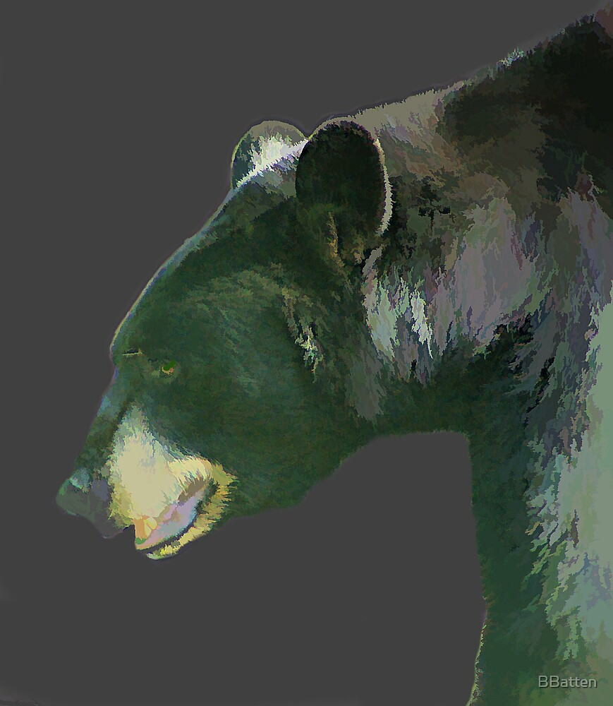 Bear by BBatten