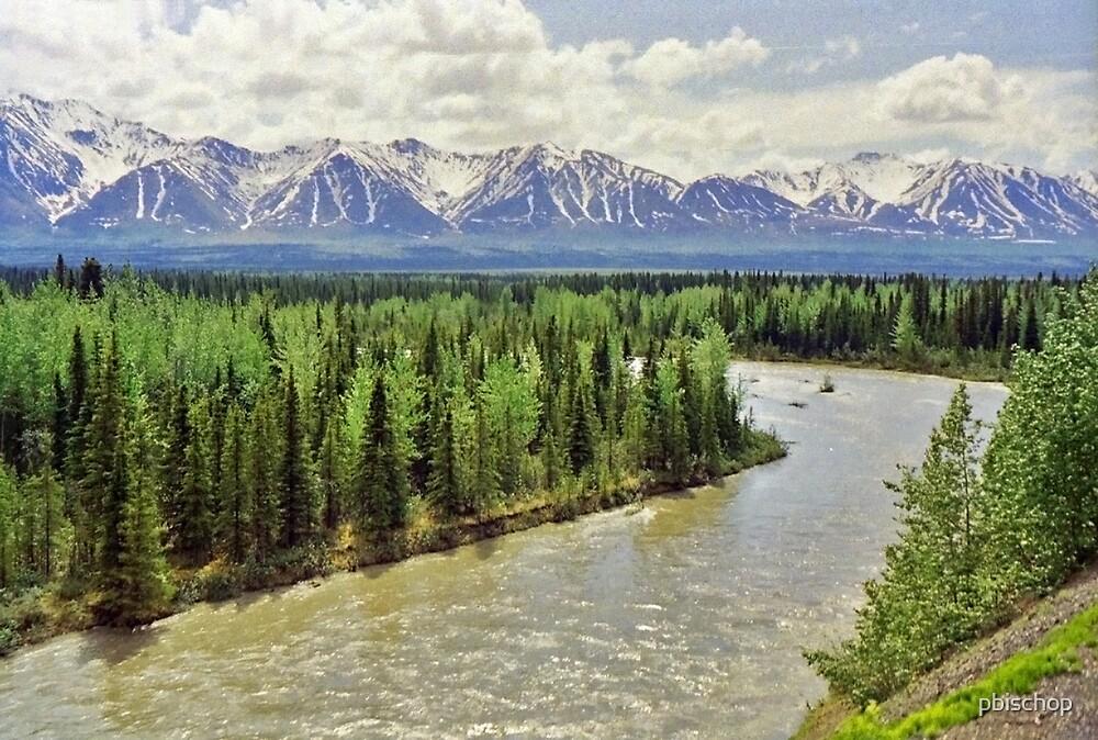 Alaska Range by pbischop