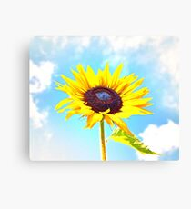 Beautiful Sunflower in Clouds Canvas Print