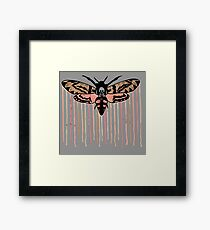 Death's-head hawkmoth Framed Print