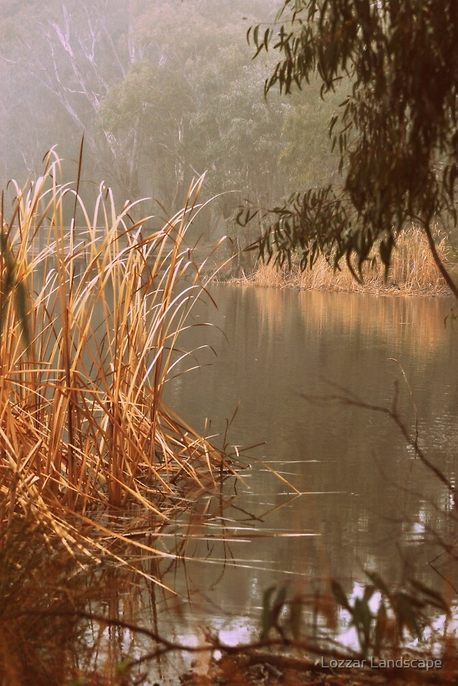 Amazing Atmosphere By Lorraine McCarthy by Lozzar Landscape