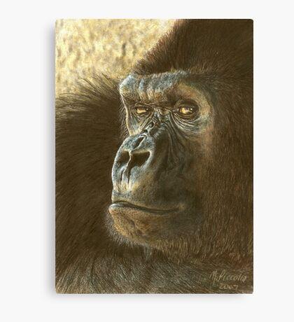 Gorilla in color pencil Canvas Print