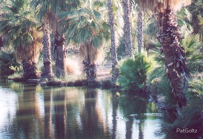 Peaceful Lake by PatGoltz