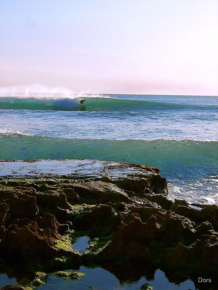 North Beach barrel by Dors