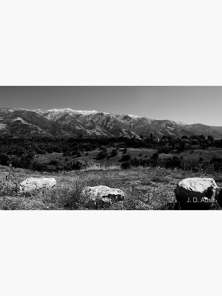 Life Valley by adsitprojectpro