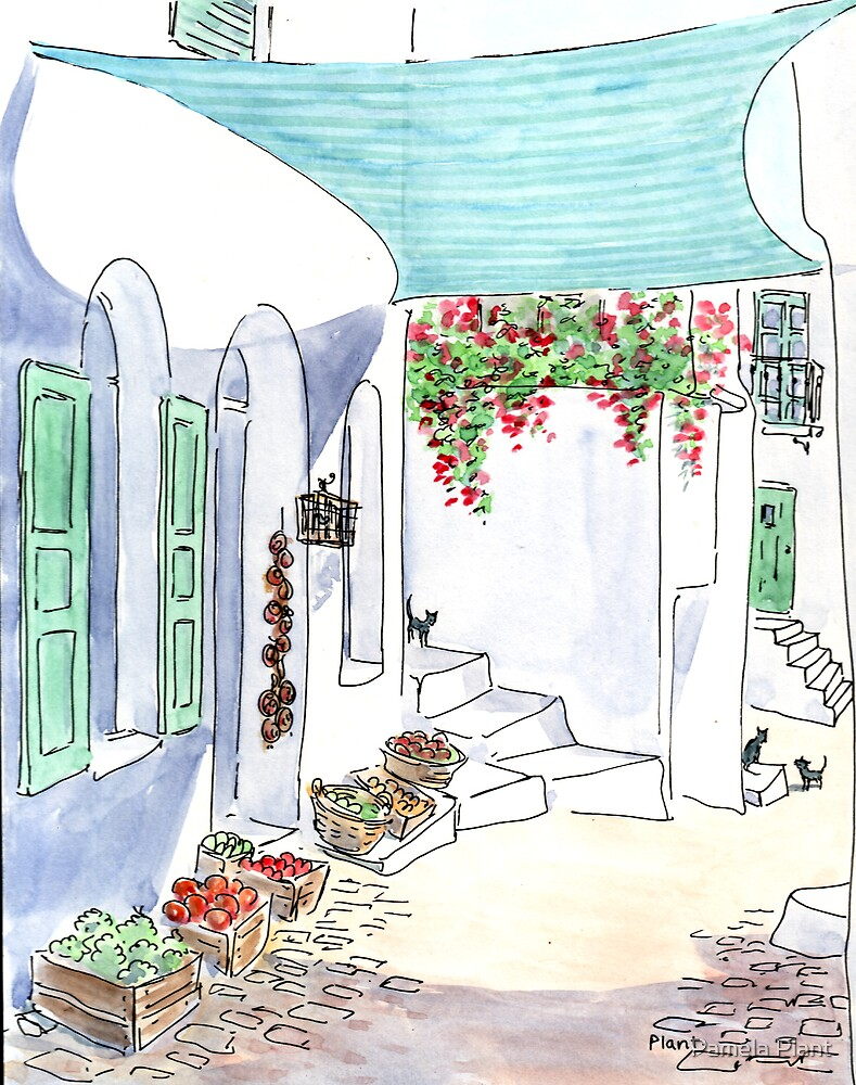 Greece 18 by Pamela Plant
