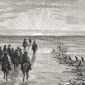 The Pampas, Gauchos skeletons & vultures by artfromthepast