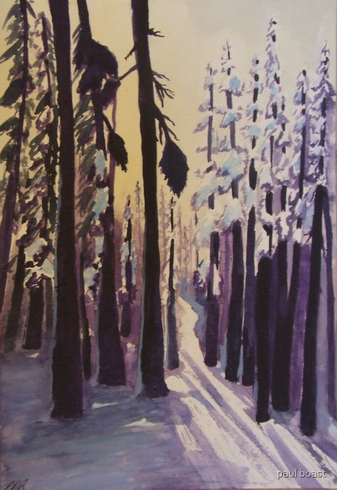 Winter Woodland by paul boast