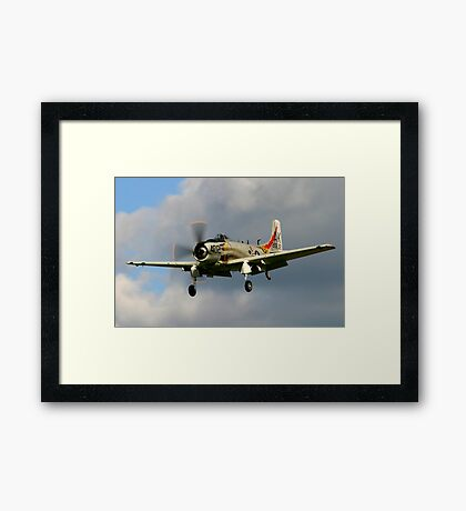 Douglas Skyraider Framed Print