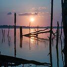 Sunrise over Manasquan Reservoir by Debra Fedchin