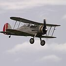 Gloster Gladiator by SWEEPER