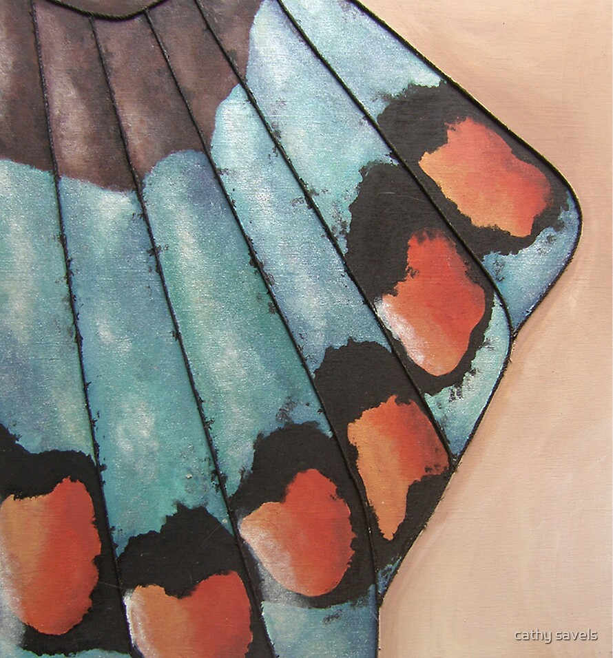 butterfly wing by cathy savels