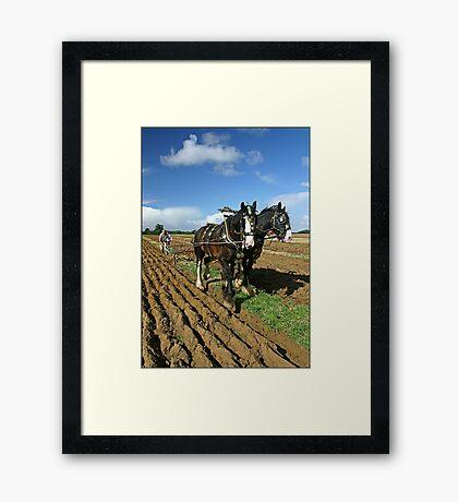Horses Ploughing Framed Print