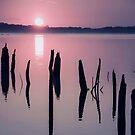 Sunrise over Manasquan Reservoir IV by Debra Fedchin