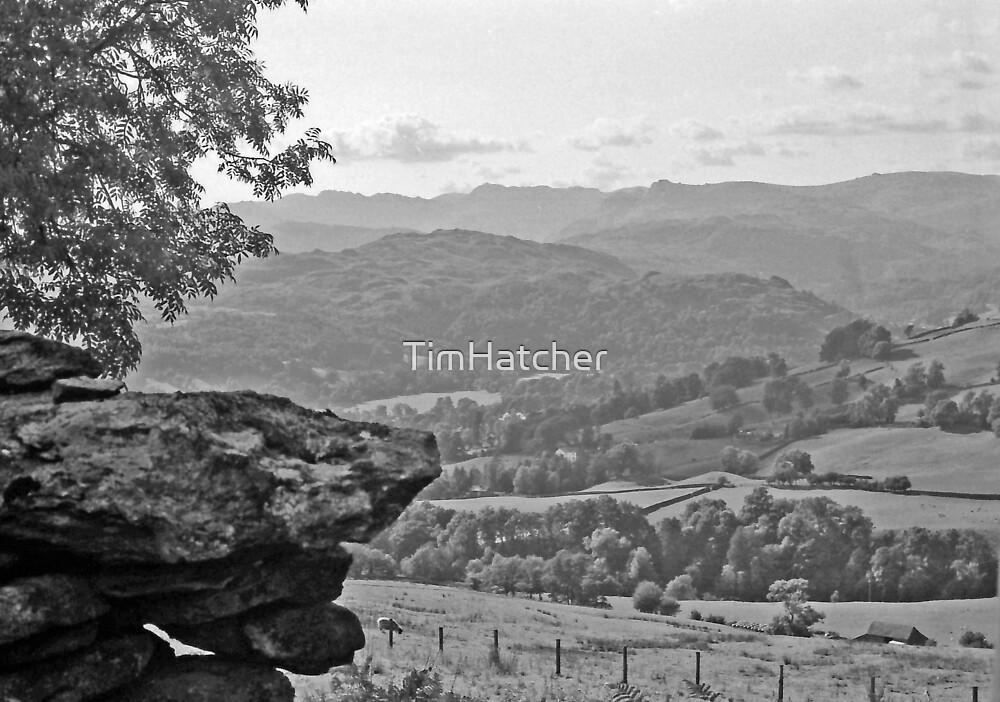 Lake District Daze by TimHatcher