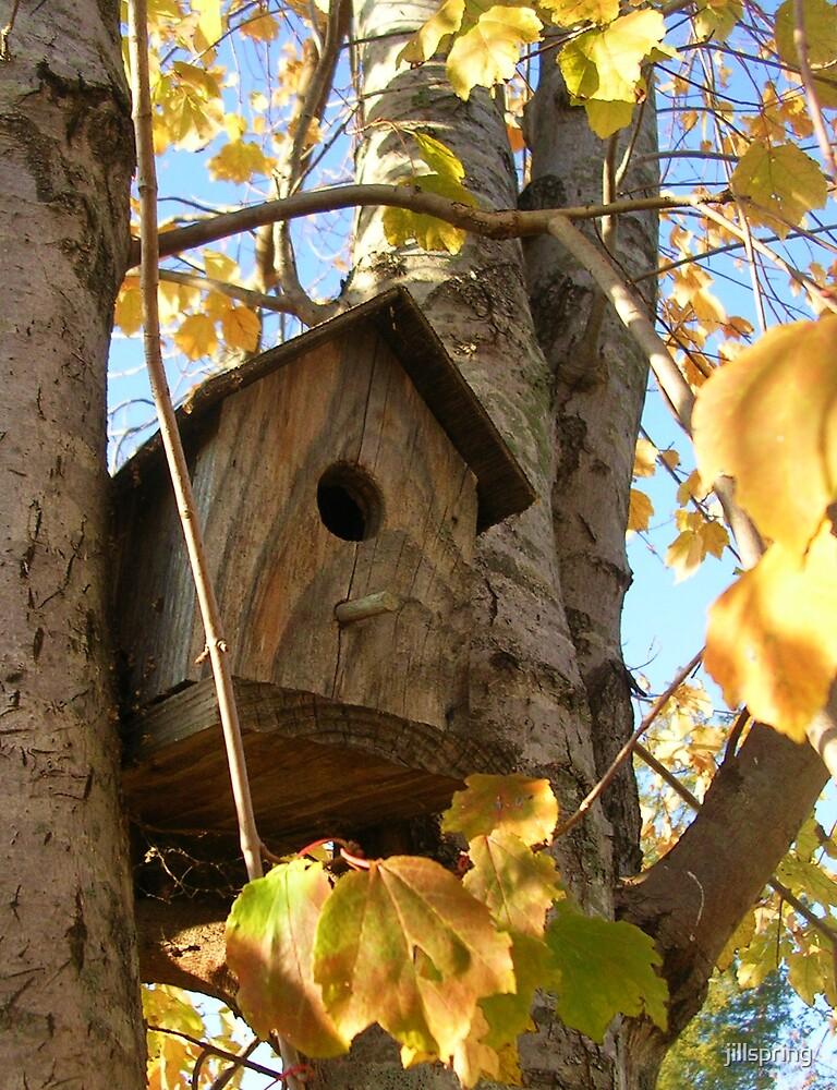Birdhouse in Autumn by jillspring