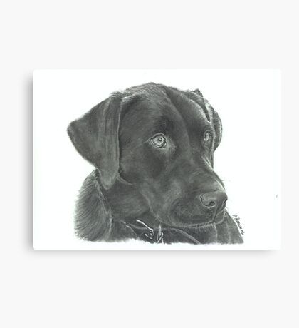Luna - graphite Canvas Print
