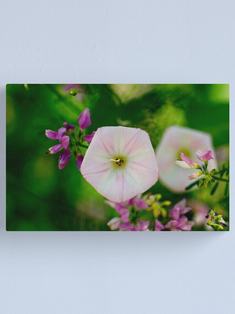 Alternate view of Wild beauty in the Canyon Canvas Print