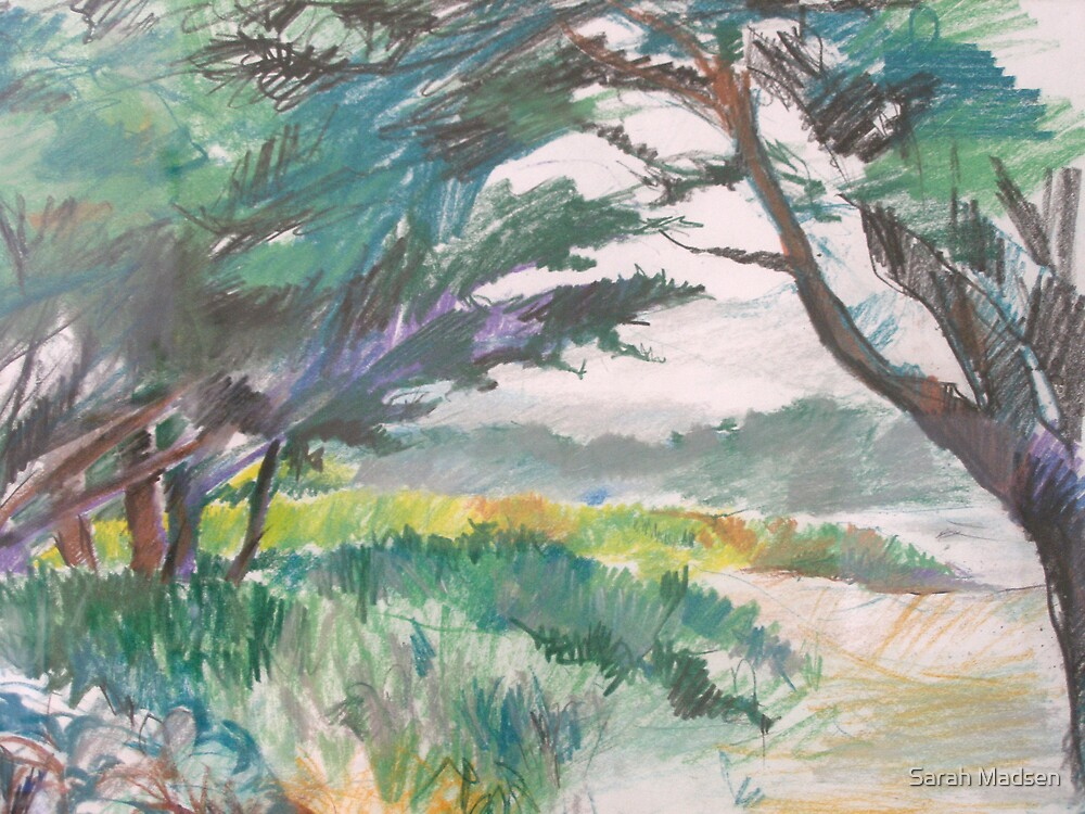 Carmel River by Sarah Madsen